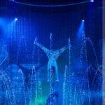 cirque italia ral2013 0364 150x150 - Raleigh, Durham & Chapel Hill Event Photographer